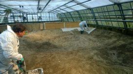 geierschildkrötenbecken,untergrundstabilisierung ...