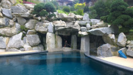 schwimmbad_aussenpool_kunstfelsen